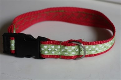 D Ring Dog Collar