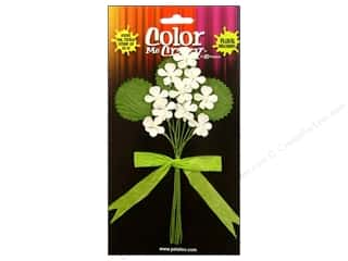 Petaloo Color Me Crazy Petite Violets 10pc
