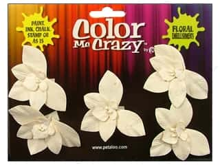 Petaloo Color Me Crazy Orchid Wild 5pc