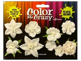Petaloo Color Me Crazy Floral Mini Canterbury Assorted 9pc