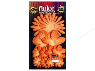 Petaloo Coredinations Color Match Tangerine 12pc