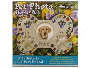 Milestones Kit Stepping Stone Pet Photo 12""
