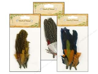 Guinea feather: Midwest Design Feather Pick Guinea Assorted 3pc