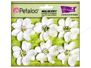Flowers / Blossoms $6 - $22: Petaloo Coredinations Color Match Camelia White 6pc