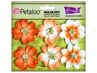 Petaloo Coredinations CM Camelia Tangerine 6pc