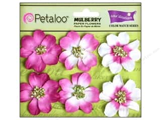 Clearance Petaloo Coredinations Color Match: Petaloo Coredinations Color Match Camelia Love Potion 6pc