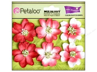 Petaloo Coredinations CM Camelia Cardinal Red 6pc