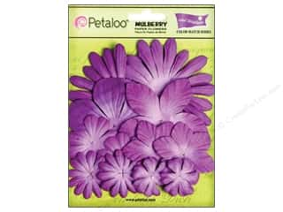Petaloo Crdntns Color Match Pansy Purple 12pc