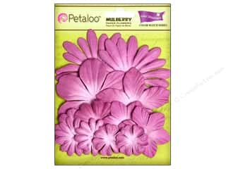 Petaloo Crdntns Color Match Sunrise Orchid 12pc