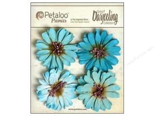 Petaloo Darjeeling Daisies Large Seaside