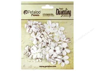 Flowers / Blossoms Brown: Petaloo Darjeeling Wild Blossom Mini White