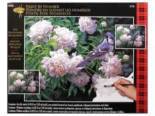 "Gardening & Patio Craft & Hobbies: Plaid Paint By Number 16""x 20"" Blue Jay & Blossoms"