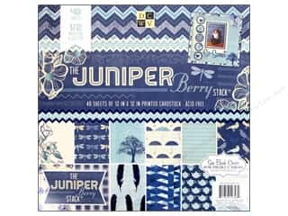 Die Cuts With A View 12 x 12 in. Cardstock Mat Stack Juniper Berry