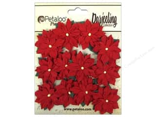 Petaloo Darjeeling Mini Poinsettias Red 12pc