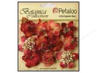 Cards Burgundy: Petaloo Botanica Collection Sugared Minis Burgundy