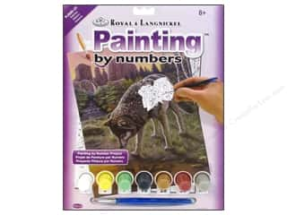 Generations Royal Paint Artist Acrylic: Royal Paint By Number Junior Reflections