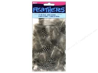 Guinea feather: Darice Feather Guinea .11oz Assorted Natural